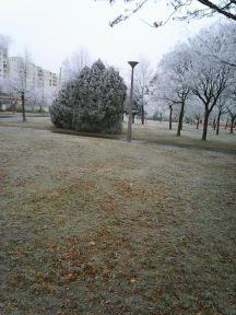 photo6701