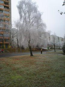 photo6702