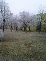 photo6705