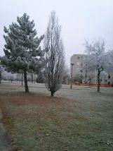 photo6708