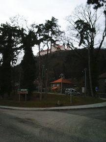 photo6919