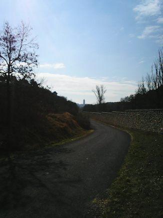 Photo7053
