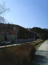 Photo7163