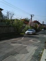 Photo7970