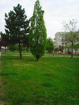 Photo8260