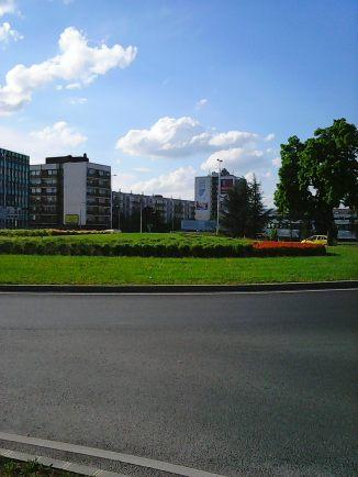 Photo8356