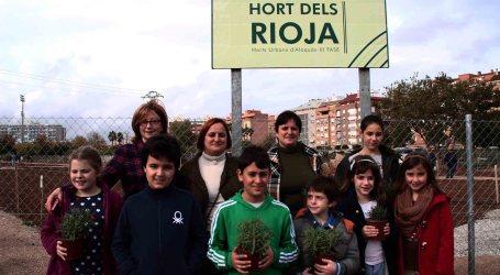 Alaquàs inaugura la tercera fase de la xarxa d'horts urbans