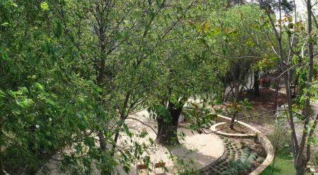Aigües de l'Horta y el Ayuntamiento de Torrent plantarán 50 árboles autóctonos en El Vedat