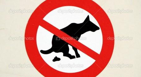 Mano dura en Burjassot contra las cacas de perro en las calles