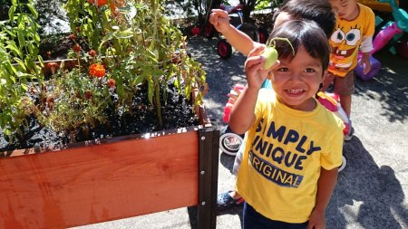 preschool-gardening