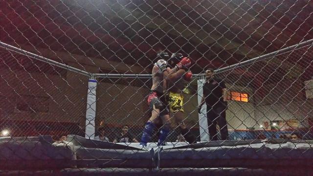 Lo mejor del Show Fight en fotos 12