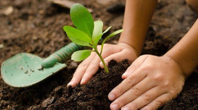 Encuentro de Agroecología para el corredor de Sierras Chicas 2