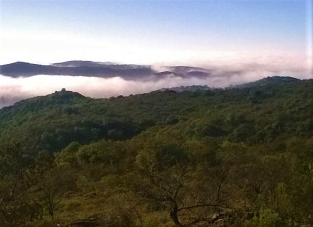 El Primer Encuentro Nacional de Reservas Municipales llega a Río Ceballos 1
