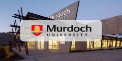 منح جامعة مردوخ للحصول على البكالوريوس في أستراليا 2021
