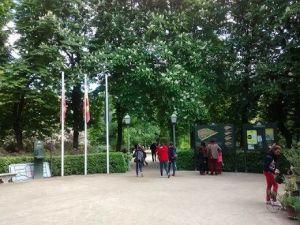 Jardín botánico interior