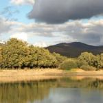 Senda del agua: un tranquilo paseo hasta la Laguna del Salmoral