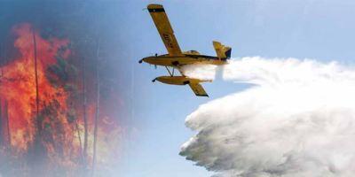 Muchos incendios forestales pueden evitarse con sencillas medidas de prevención.
