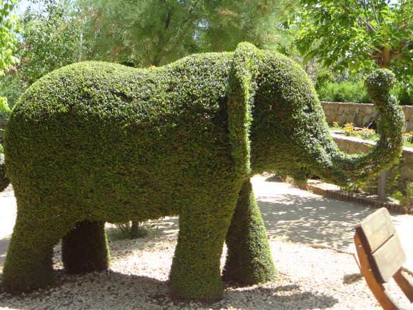 El Bosque Encantado. Elefante