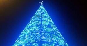 luces de Navidad abeto sol