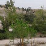Mejoras para el parque de la Gavia