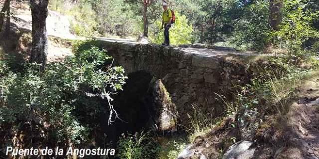 ruta de senderismo al tejo Barondillo lozoya Puente Angostura