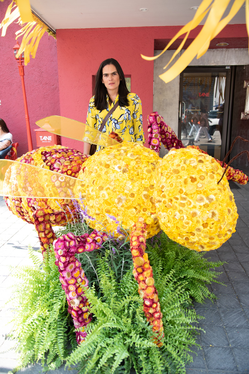 Festival FYJA, Polanco en flores