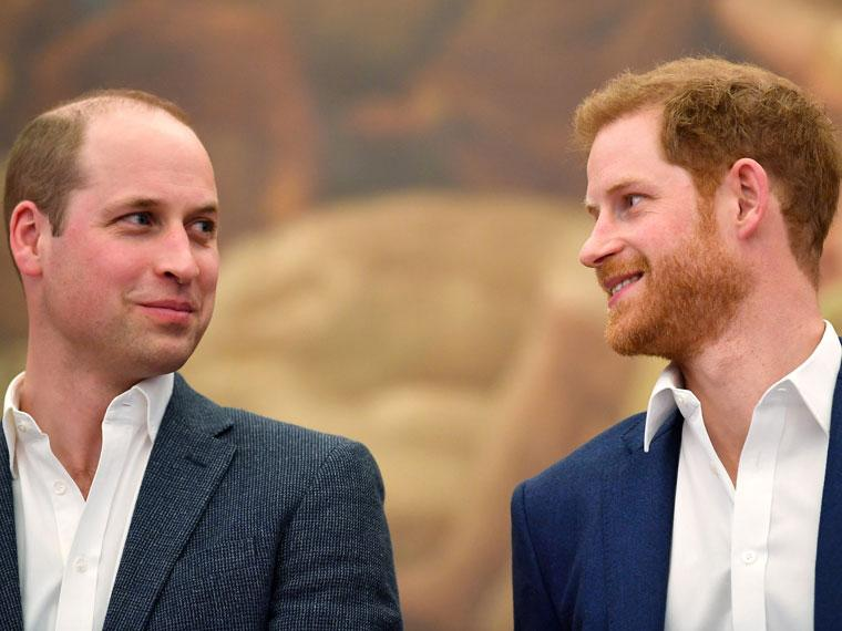 principe-harry-william