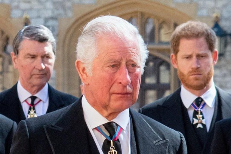 Príncipe-Carlos-yPríncipe-Harry