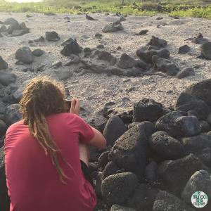 Foto de Peter fotografiando iguanas elmundoenlamochila.com