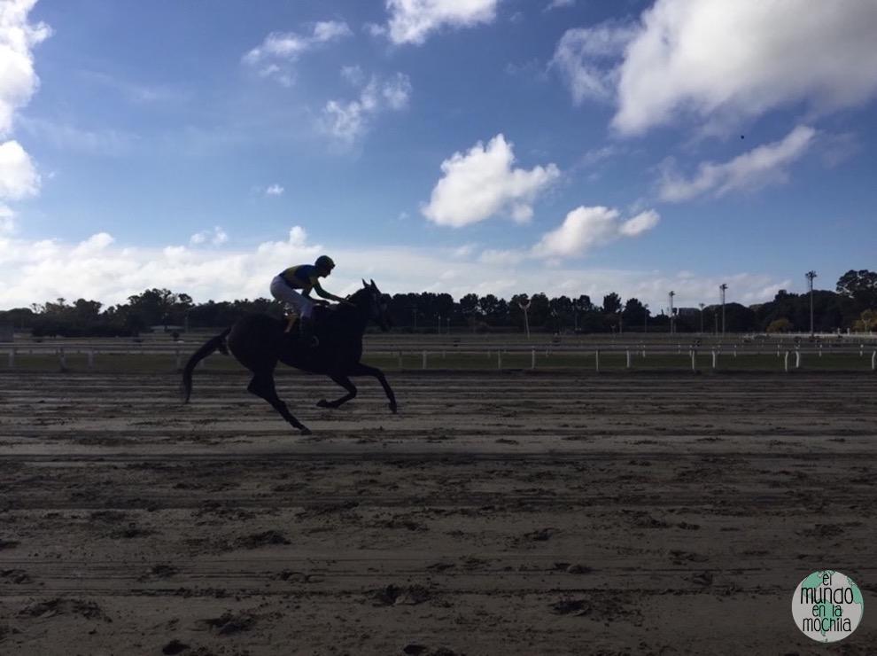 caballo_carrera