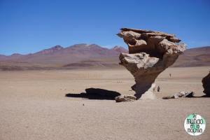 salar-uyuni-reserva-eduardo-avaroa-arbol-piedra
