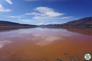 salar-uyuni-reserva-eduardo-avaroa-laguna-colorada