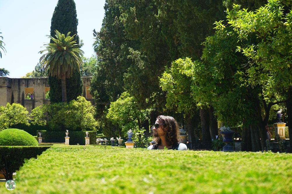 Peter caminando en los jardines del Real Alcazar de Sevilla