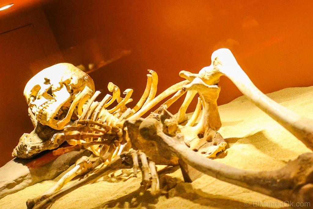 Museo Cueva de Nerja.