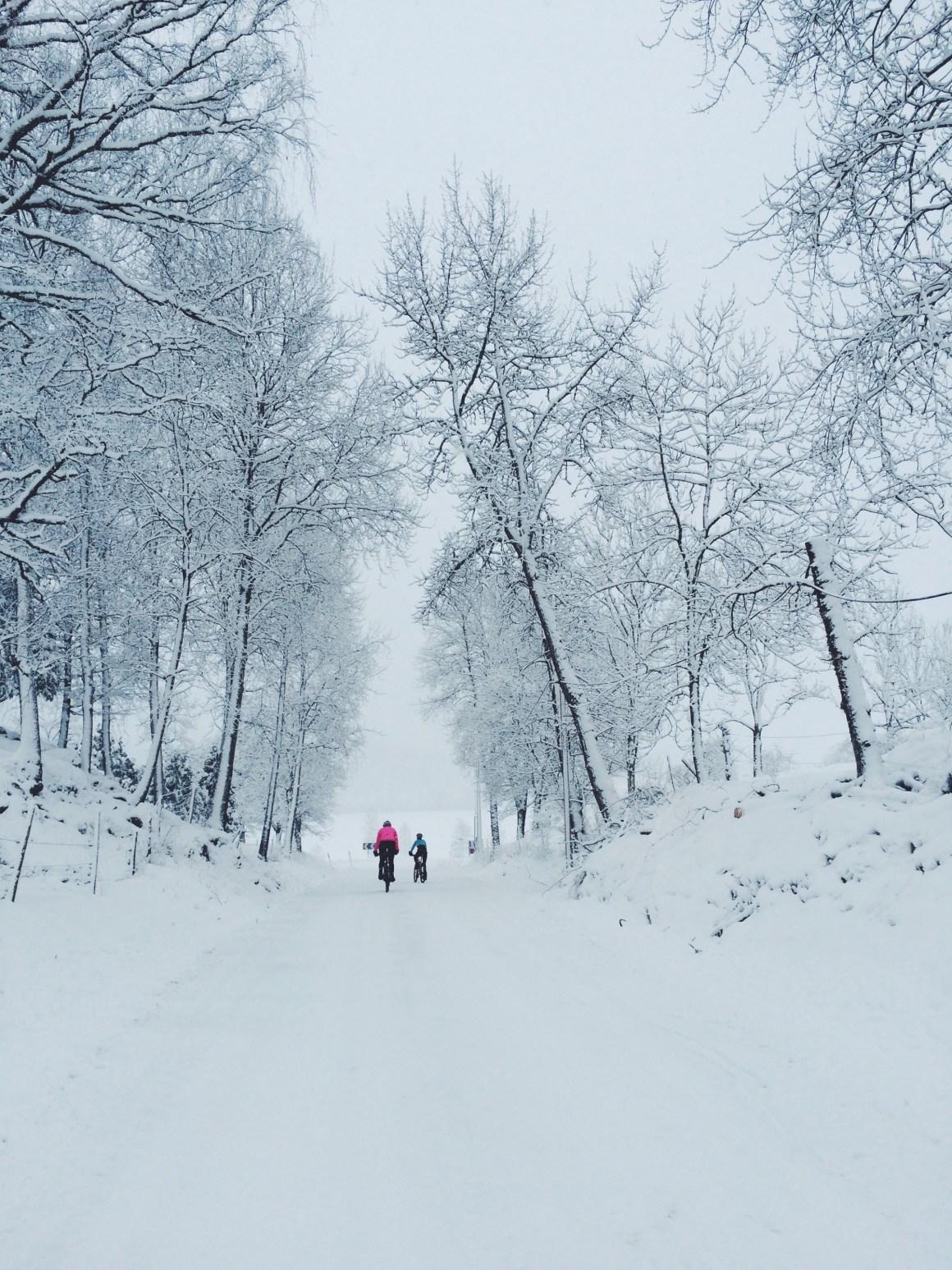 Vintercykla i Jönköpings Toscana