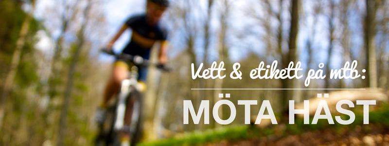 mota_hast
