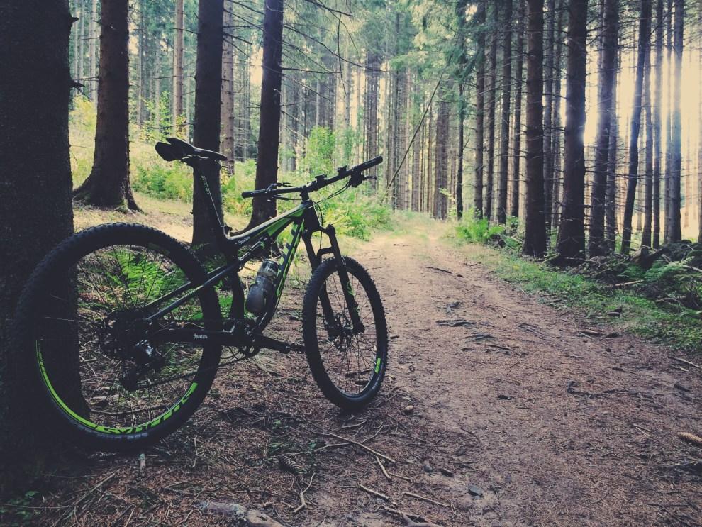 Bauerleden med cykel