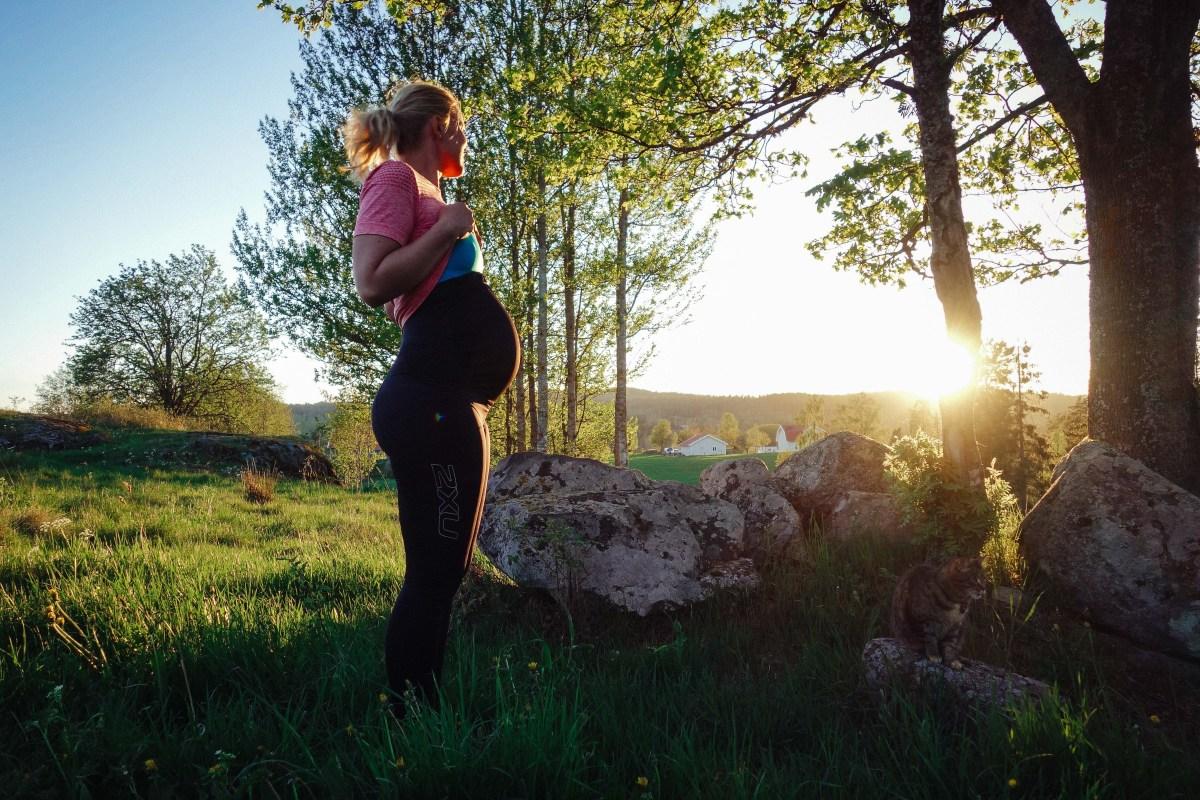 Träningstights för gravida