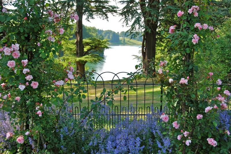 blenheimrosegardens