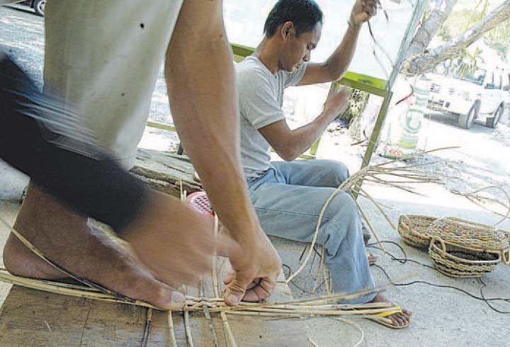 El Niño, storms slashed abaca output in 2019–PhilFida