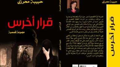 Photo of اليوم السابع يكتب عن: «قرار أخرس»