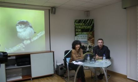Cristina Sobrado, coordinadora de Descubriendo Moratalla, nos habla de estas rutas y de su nueva sección para este semanario