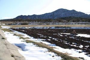 Nieve en Moratalla (foto Enrique Soler)