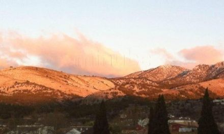 Sobre la caza de los montes en Caravaca