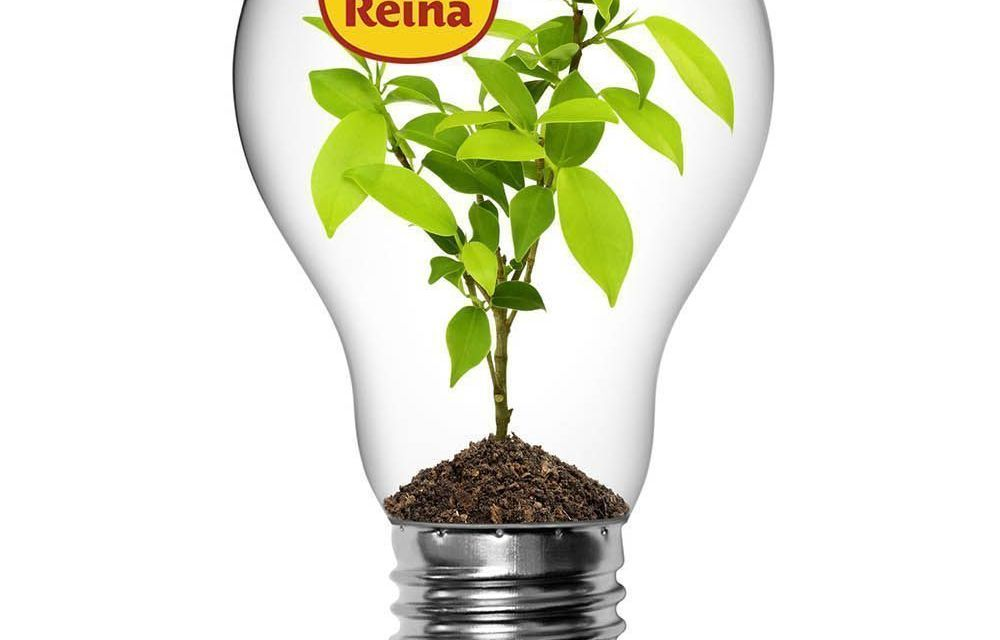 Postres Reina se ilumina de forma sostenible