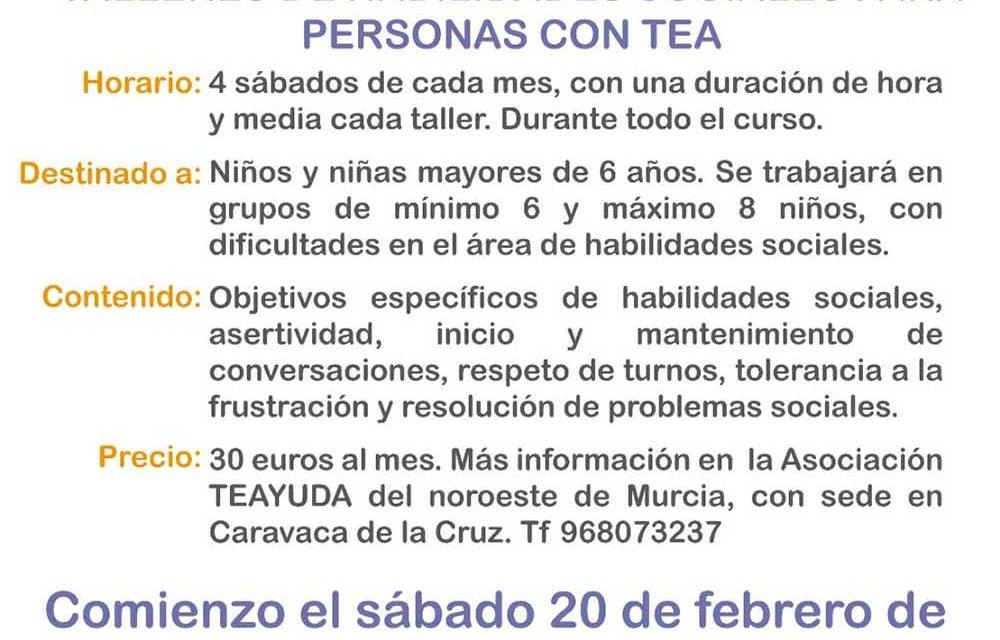 TEAYUDA, asociación comarcal para familias con hijos con Trastorno del Espectro Autista