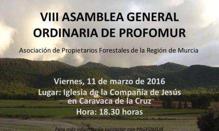 PROFOMUR celebra su VIII Asamblea General Ordinaria en la Iglesia de la Compañía de Jesús en Caravaca