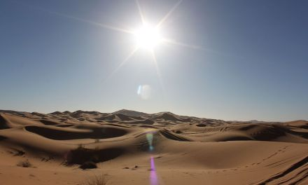 Descubriendo el desierto