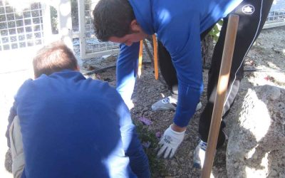 Nuevo curso de formación ocupacional en Betania