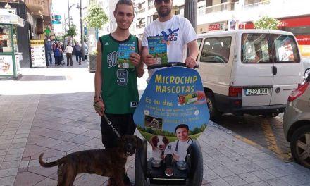 El Ayuntamiento de Caravaca realiza una campaña para fomentar la tenencia responsable de animales